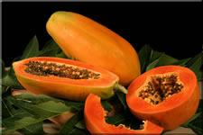 Papaya only grows in tropical regions like Brazil. You will not find it in the US.